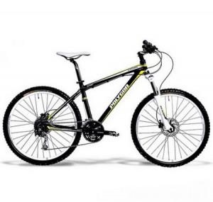 Sepeda Polygon COZMIC CX1.0 (2012 SERIES)