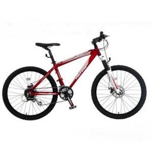 Sepeda Polygon Xtrada 3